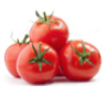 Tomaten aus Parma